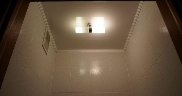 Потолочный светильник в туалете