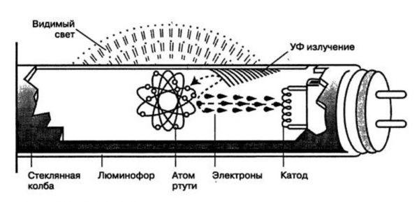 Принцип работы люминесцентных источников света