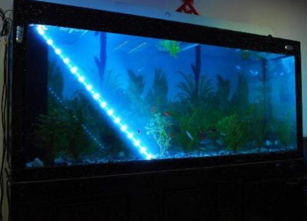 Декоративная подсветка аквариума