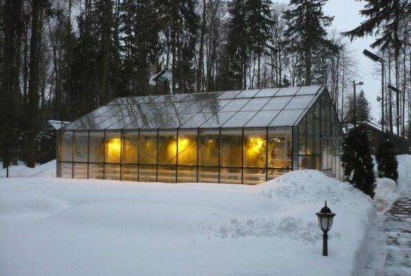 Освещение теплицы зимой