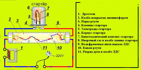 Схема работы лампы дневного света