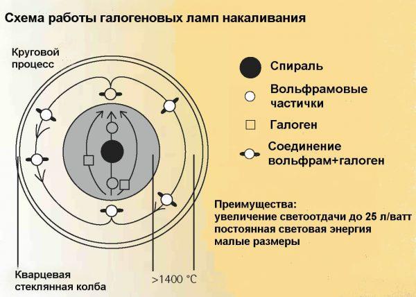 Схема работы галогеновой лампы