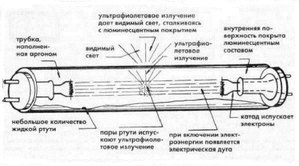 Устройство линейной люминесцентной лампы