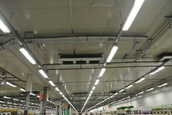 Лампы дневного света отличаются высокой экономичностью и невысокой стоимостью