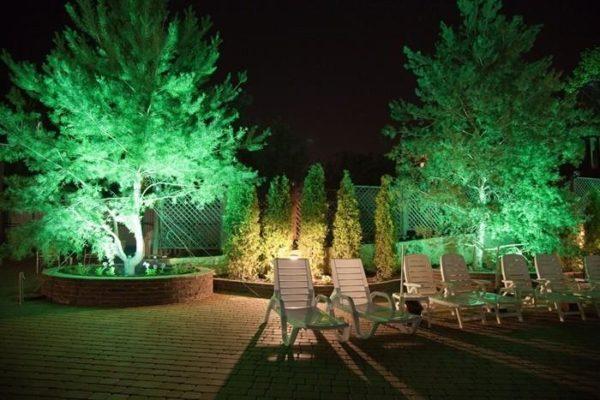 Размещение источников света внутри кроны дерева