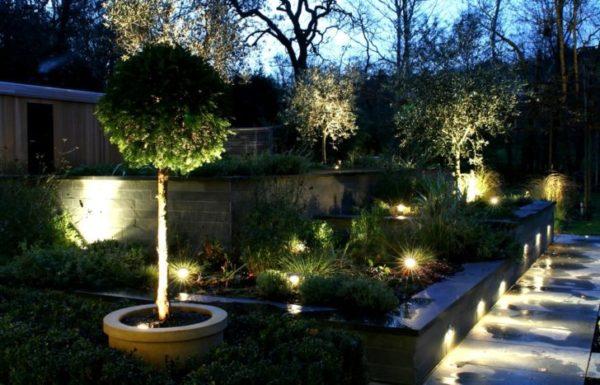 Светильники для подсветки растений на дачном участке