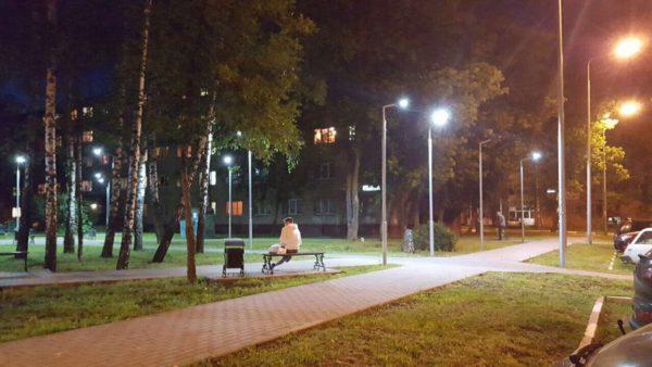 Для организации уличного освещения обычно используют металлические опоры