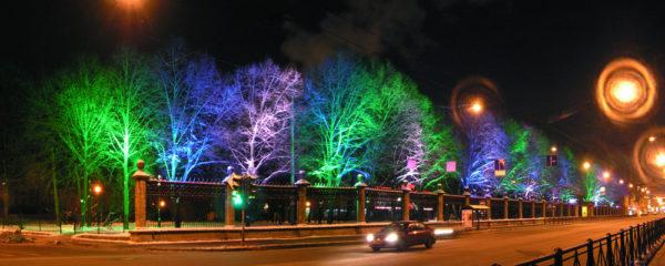 Художественная подсветка деревьев