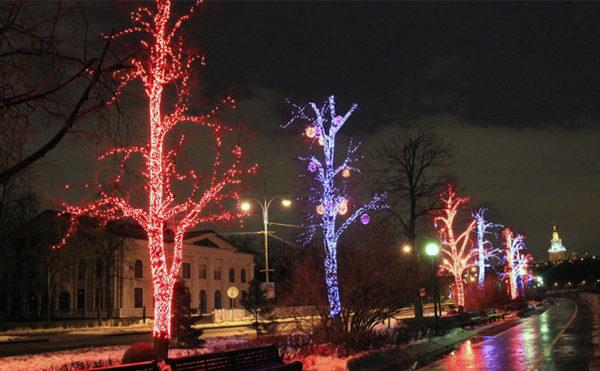Праздничная подсветка деревьев