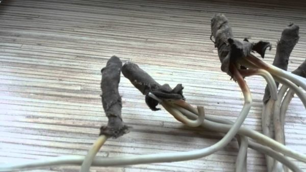 Старая алюминиевая проводка в квартире